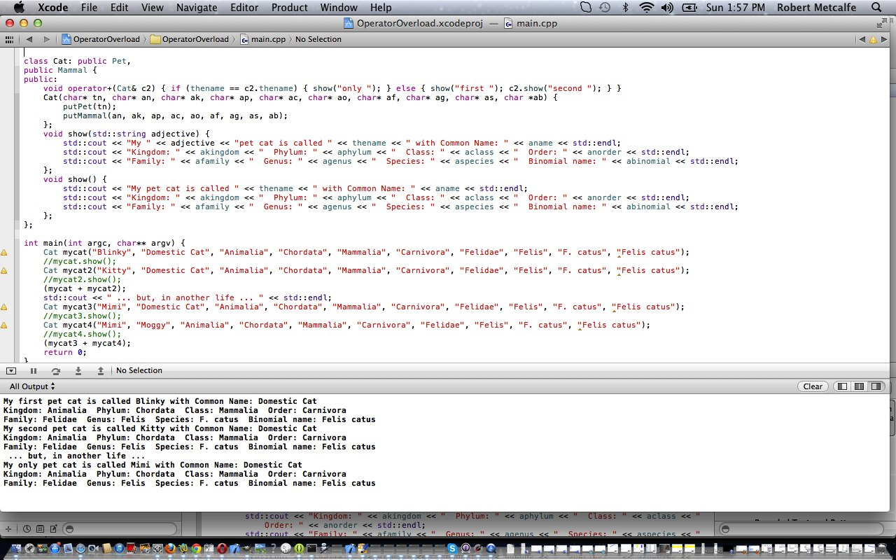 Licensed binary options operator