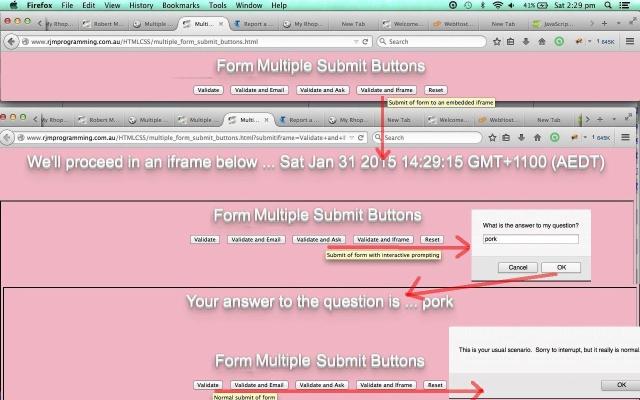 HTML Form Multiple Submit Buttons Primer Tutorial